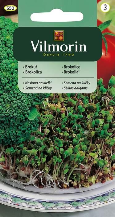 Brokolice semena na klíčky