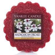 Vosk YANKEE CANDLE 22g Madagascan Orchid